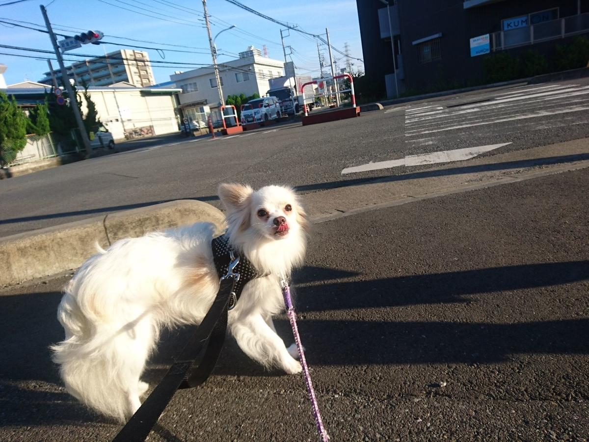 f:id:miyuki1967:20190907113214j:plain:w450
