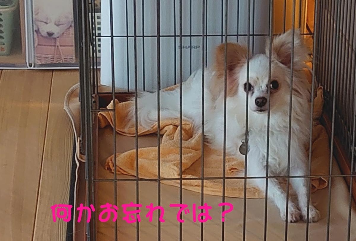 f:id:miyuki1967:20200303105939j:plain:w450