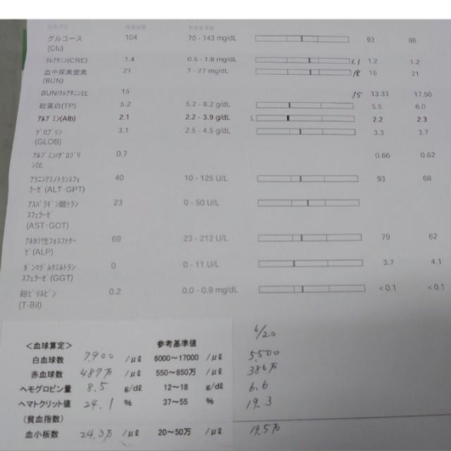 f:id:miyuki1967:20200714165053j:plain:w450