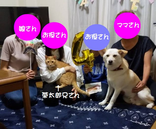 f:id:miyuki1967:20200731110716j:plain:w450