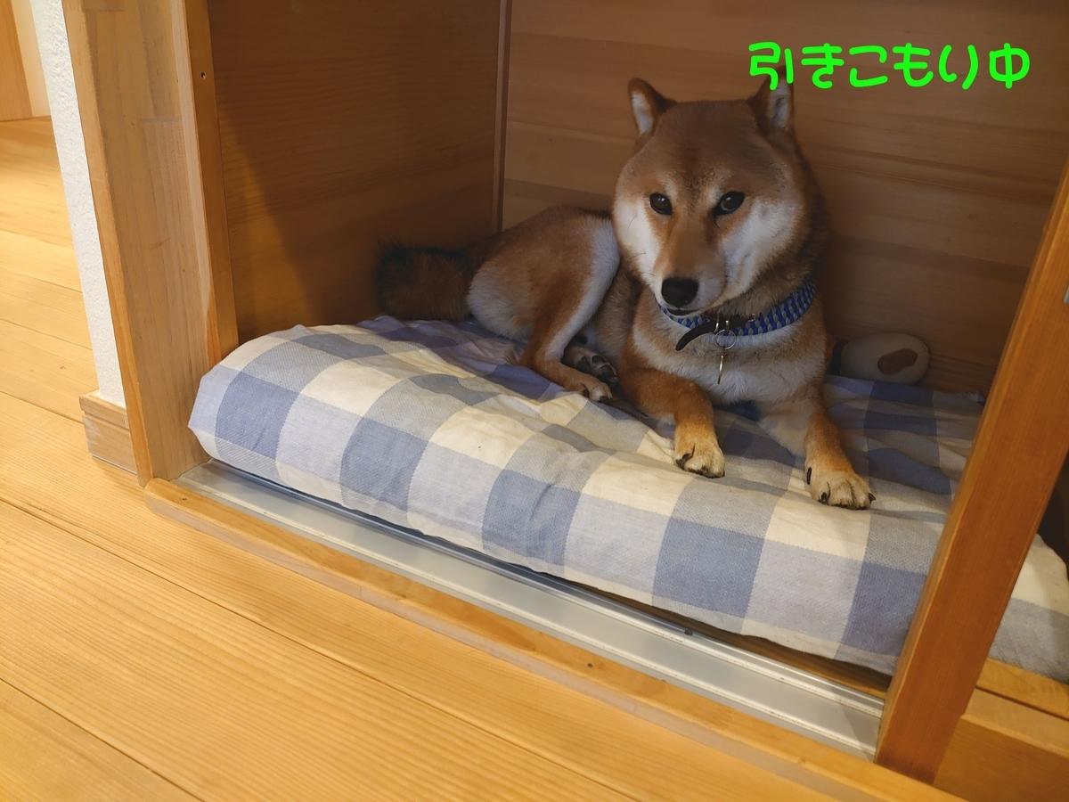 f:id:miyuki1967:20210607131703j:plain:w450