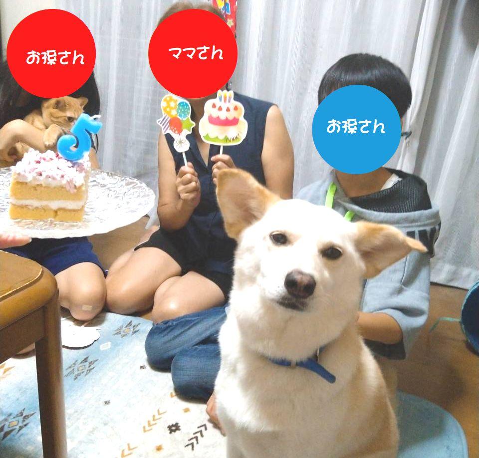 f:id:miyuki1967:20210708112246j:plain:w450