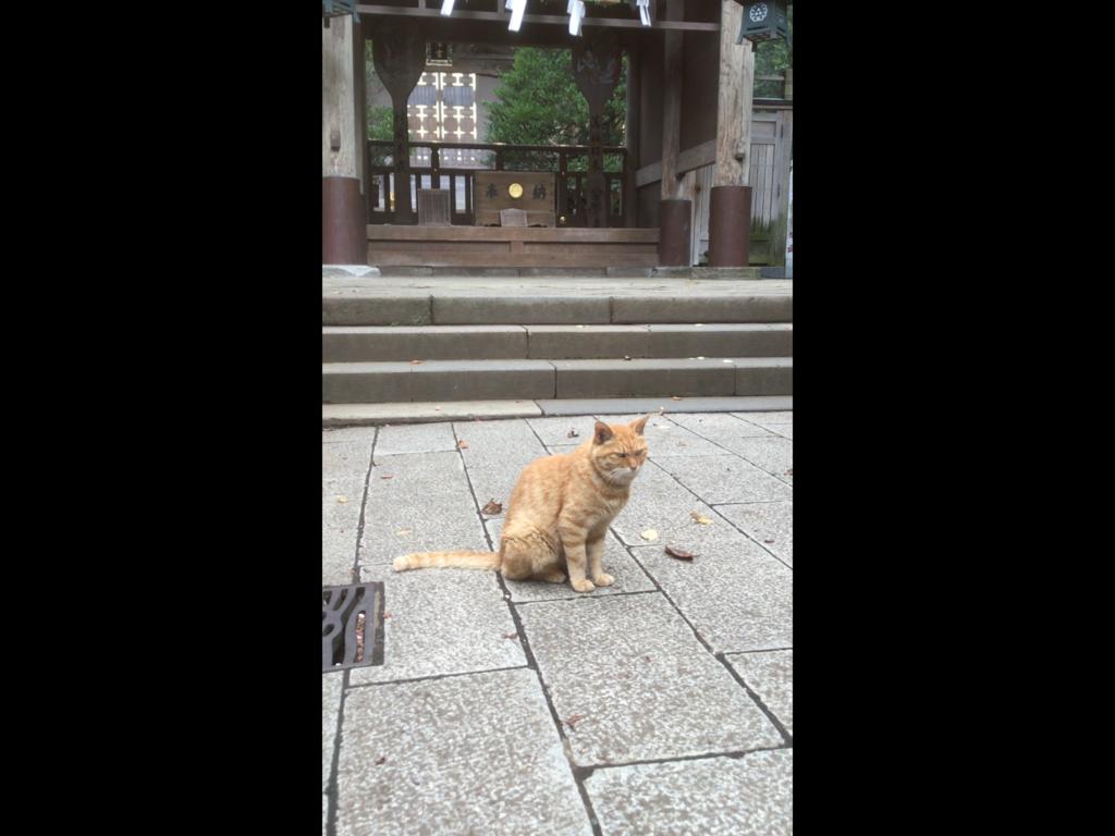 f:id:miyuki369:20180817113600p:plain