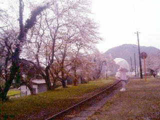 f:id:miyuki_kusanagi:20090605213308j:image
