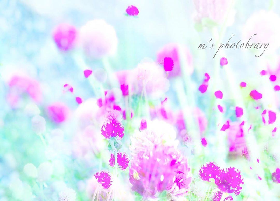 f:id:miyuki_sato:20200910131610j:plain