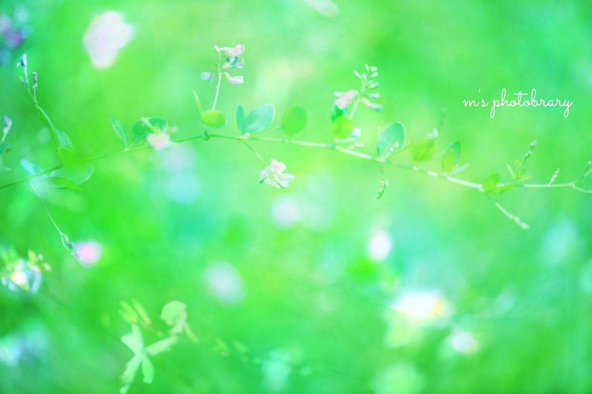 f:id:miyuki_sato:20200922140817j:plain