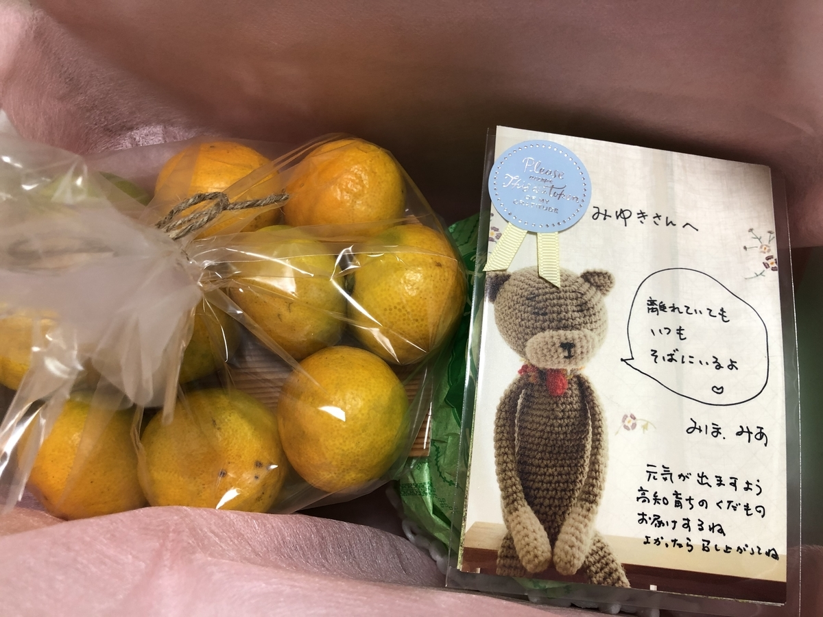 f:id:miyuki_sato:20201021103512j:plain
