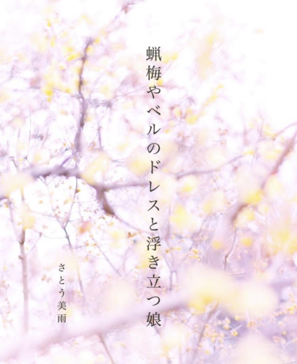 f:id:miyuki_sato:20210204094304j:plain