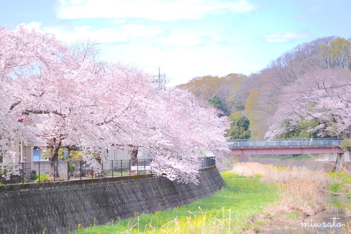 f:id:miyuki_sato:20210330103736j:plain