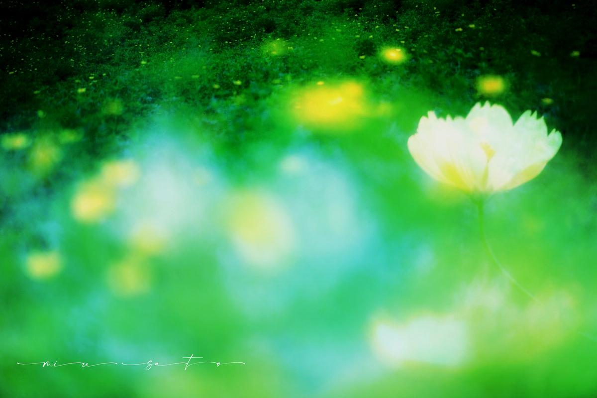 f:id:miyuki_sato:20210908094614j:plain