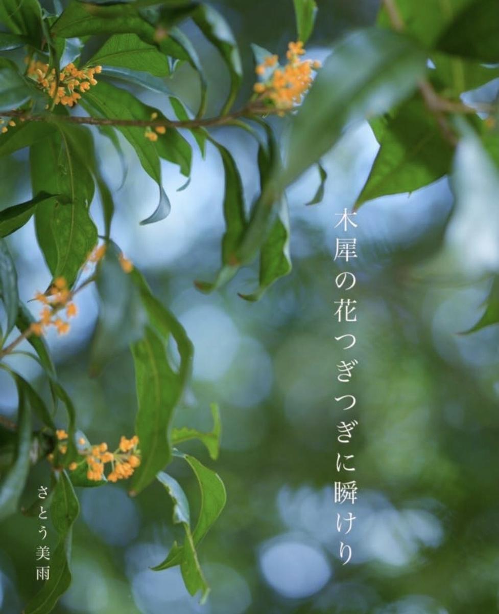 f:id:miyuki_sato:20210914203342j:plain