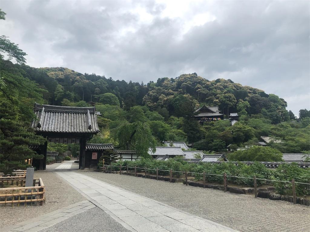 f:id:miyukiwi:20190524103917j:image