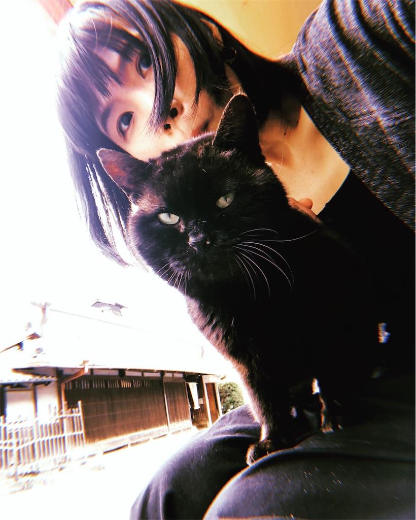 f:id:miyukiwi:20190524110153j:image