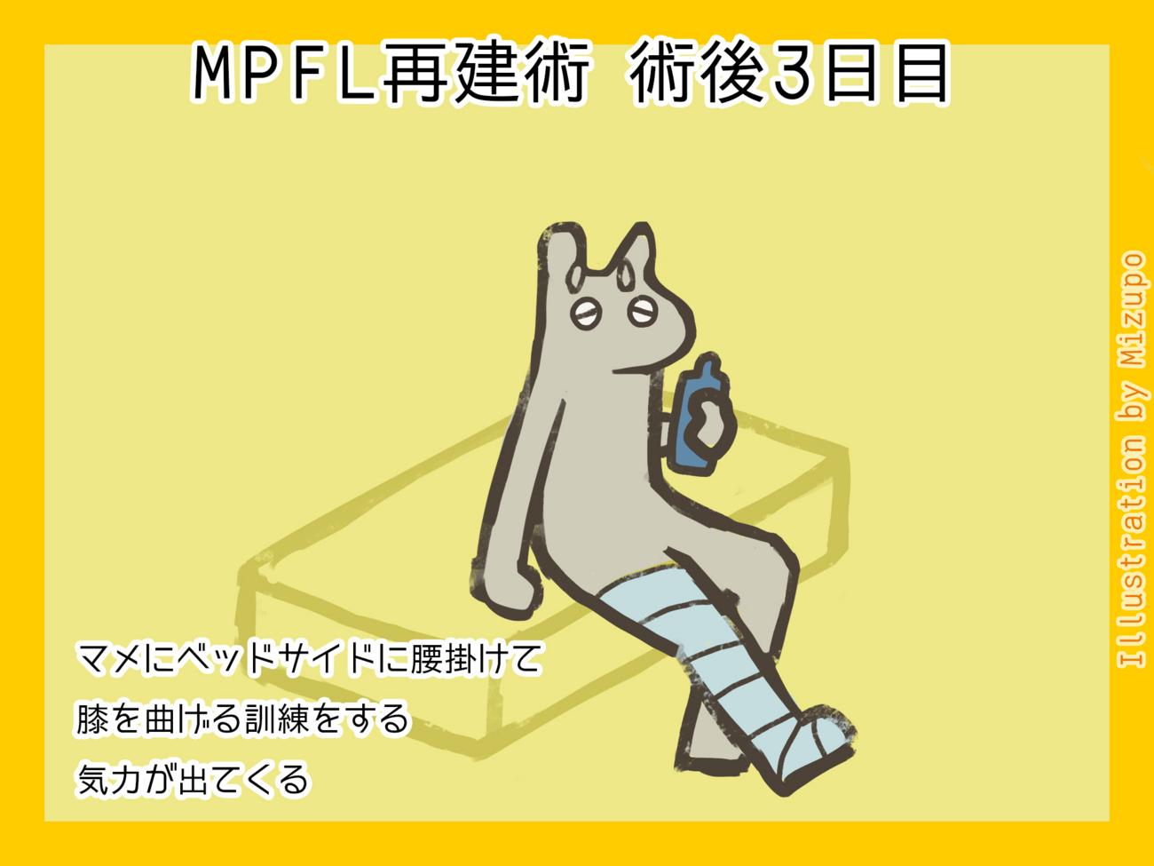 f:id:mizi:20171016105637j:plain