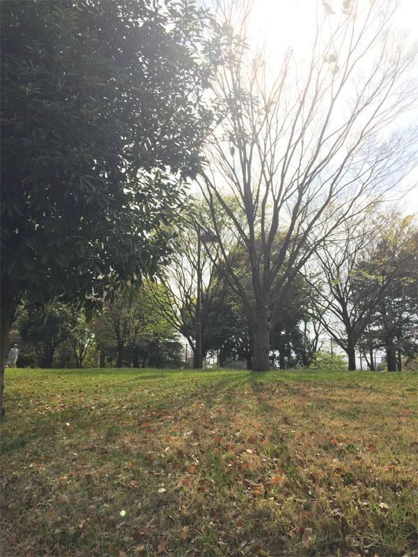 f:id:mizio-kamioh:20170417155826j:plain