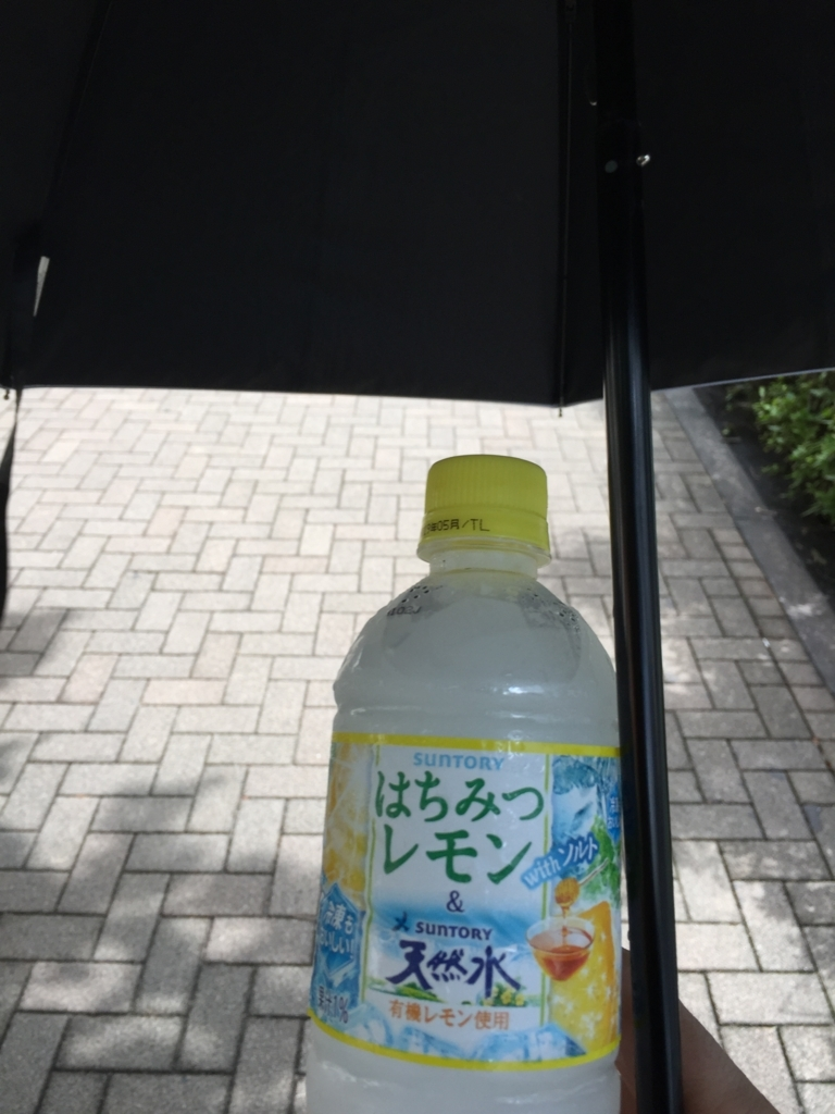 f:id:mizio-kamioh:20180811165253j:plain
