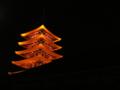 夜の金龍山浅草寺
