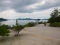 きれいな丘です 大久野島