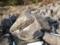 ただいま風化中 久井の岩海