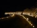 岡山さくらカーニバルな夜