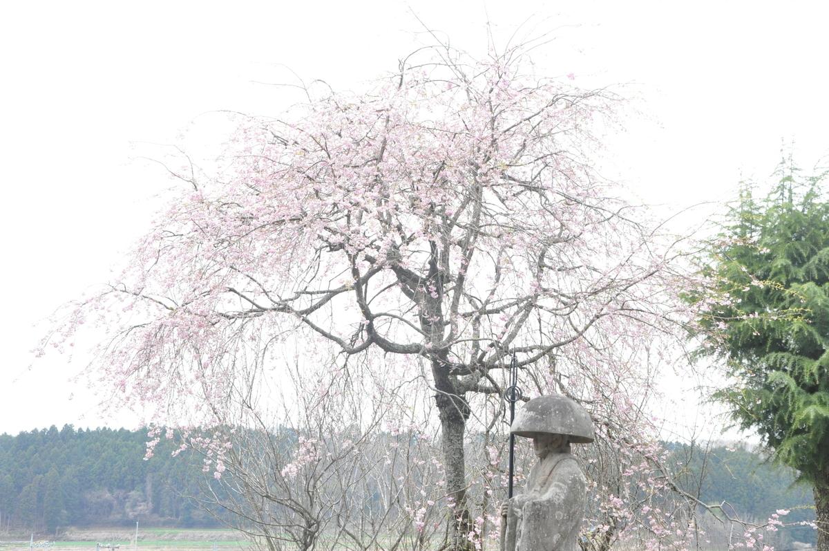 f:id:mizu-kuki:20190418130556j:plain