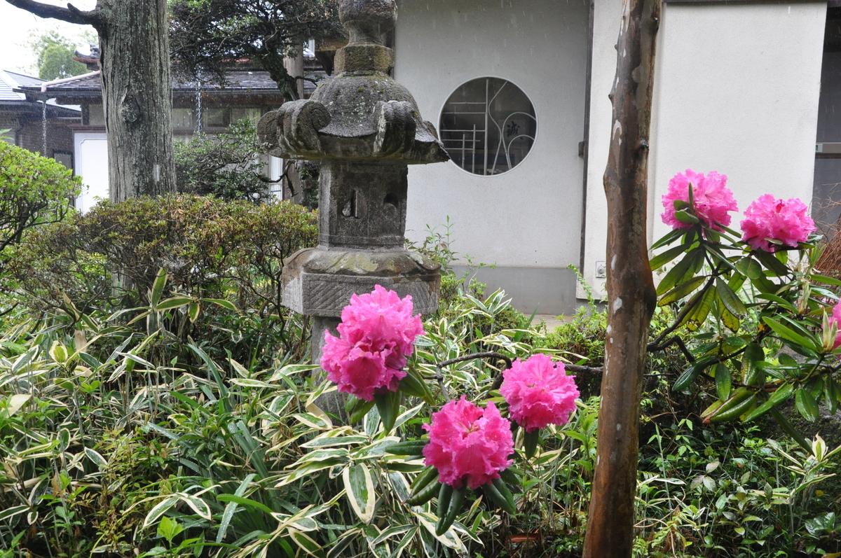 f:id:mizu-kuki:20190430145038j:plain