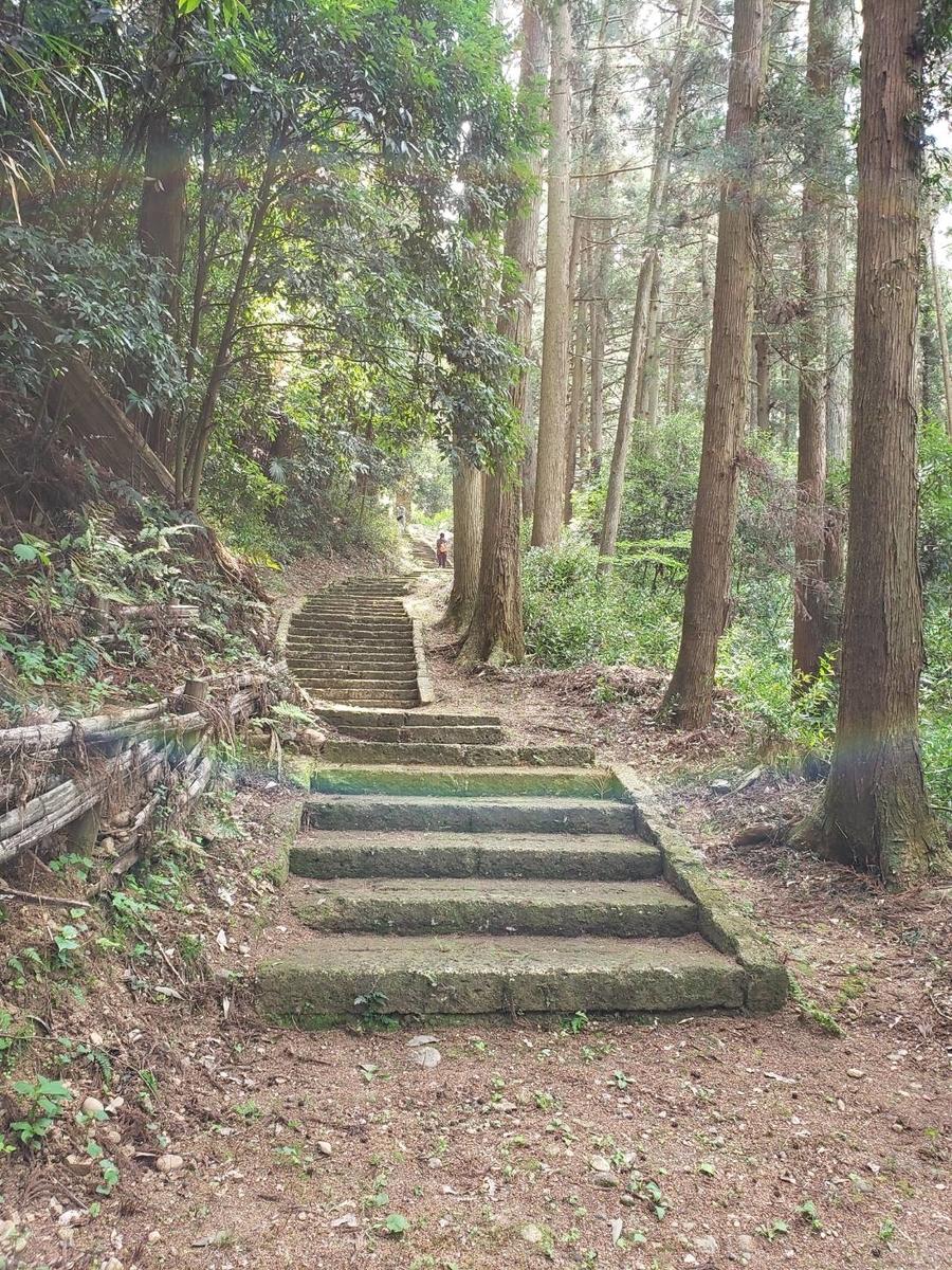 f:id:mizu-kuki:20190614175036j:plain
