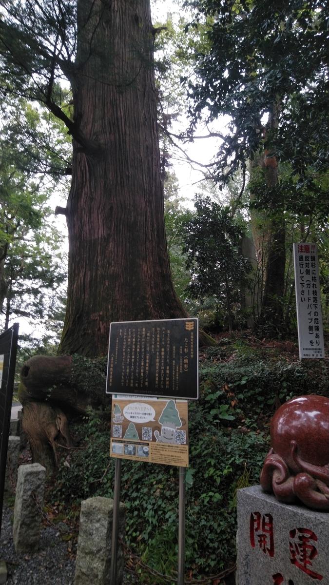 f:id:mizu-kuki:20191017223031j:plain
