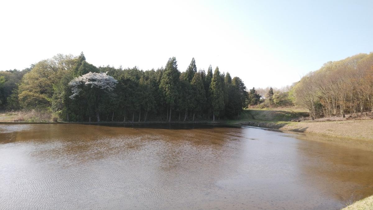f:id:mizu-kuki:20200425202155j:plain