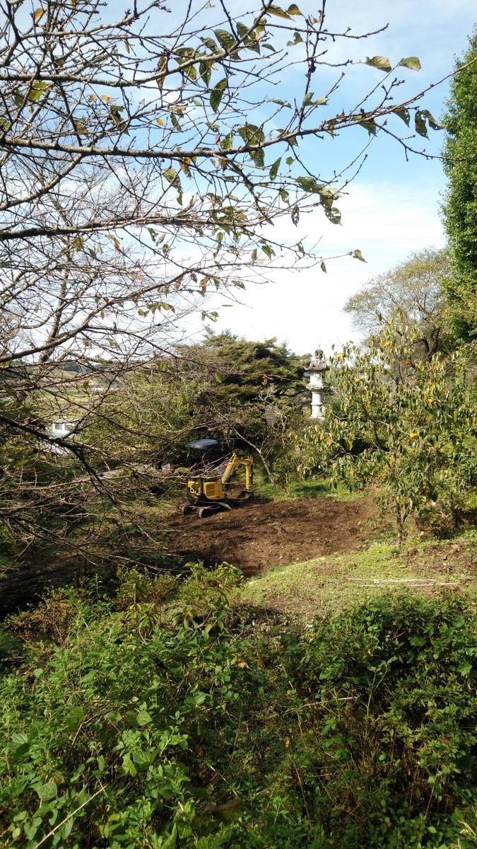 f:id:mizu-kuki:20201020111039j:plain