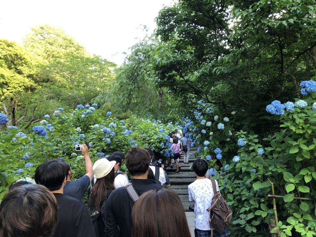 f:id:mizu-travel:20180904145540j:plain