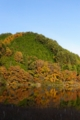 20111113 南信州奥三河