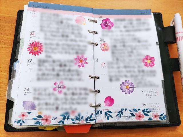 f:id:mizu_blossom:20201010091706j:image
