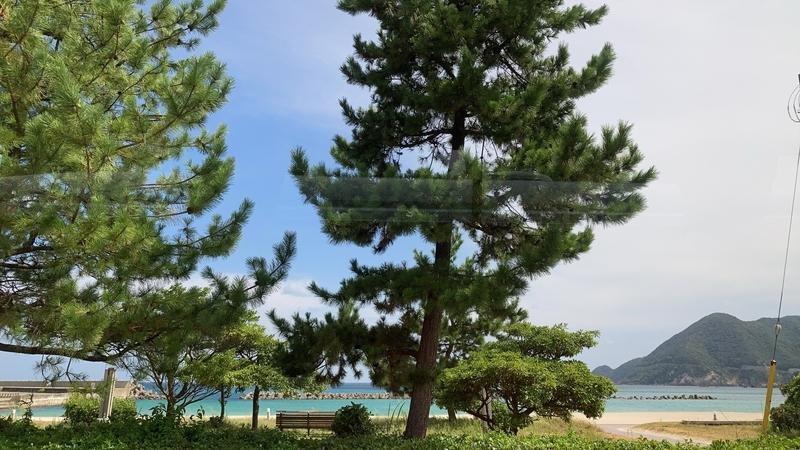 f:id:mizu_rainforest:20201013214456j:plain