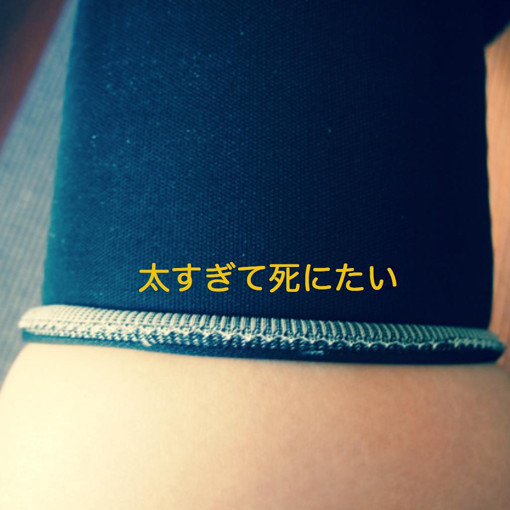 f:id:mizuemizue23:20170423134123p:plain