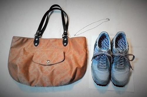 三泊四日、鞄と靴