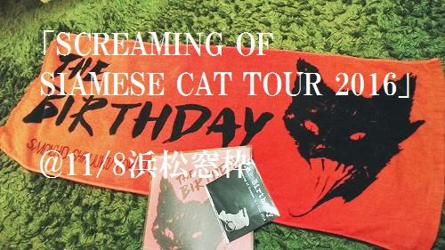 The Birthday「シャム猫の絶叫ツアー」