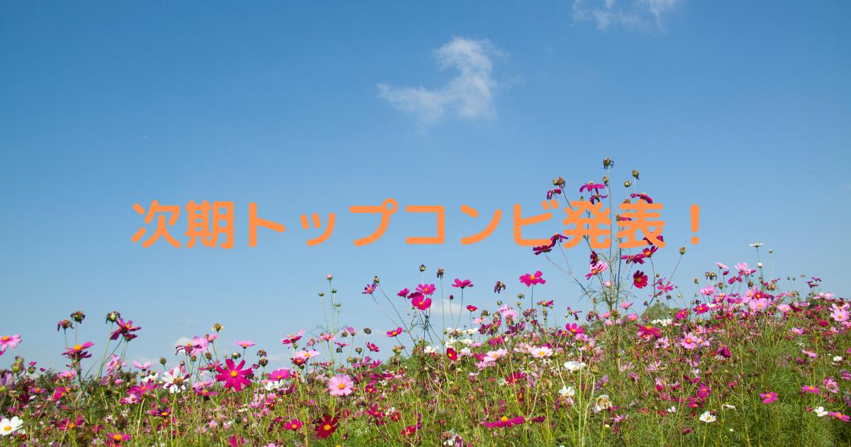 f:id:mizuho_144:20210406204558p:plain