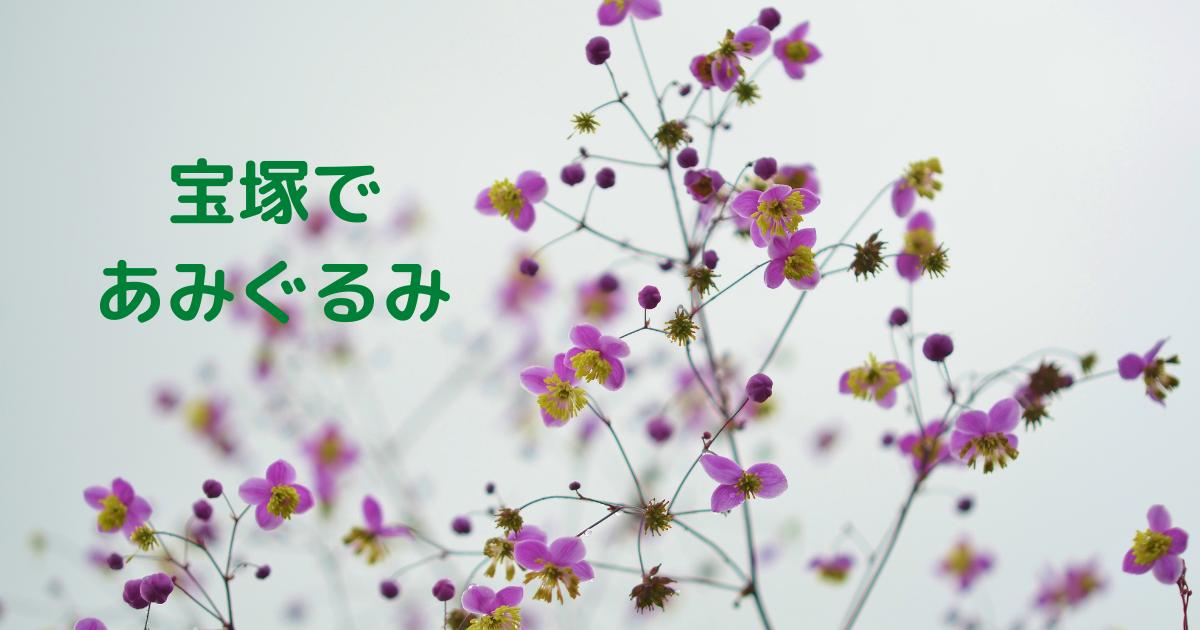 f:id:mizuho_144:20210718232645p:plain