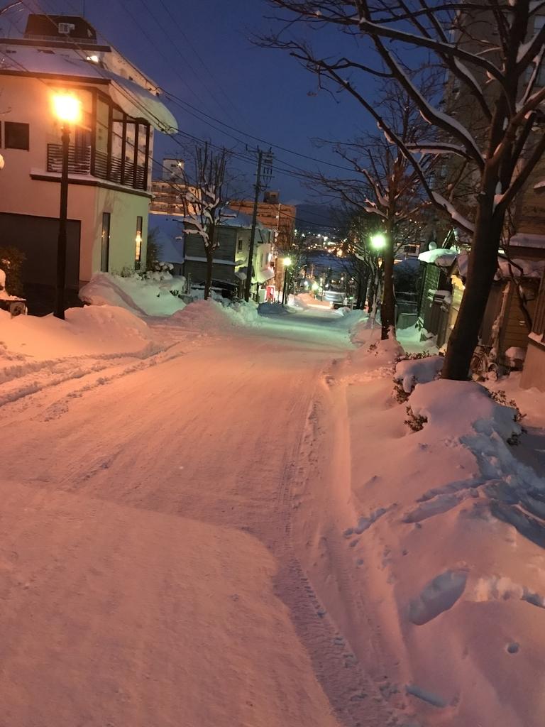 f:id:mizuhoha:20190105155606j:plain