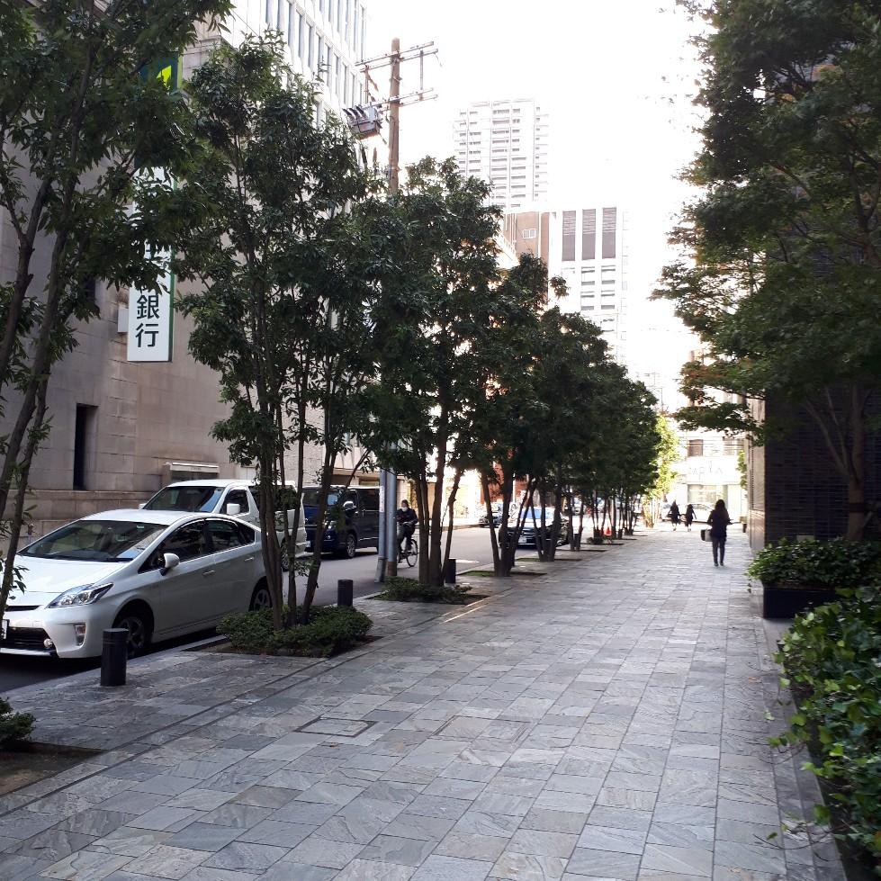 f:id:mizuhosakura555:20180530170651j:plain