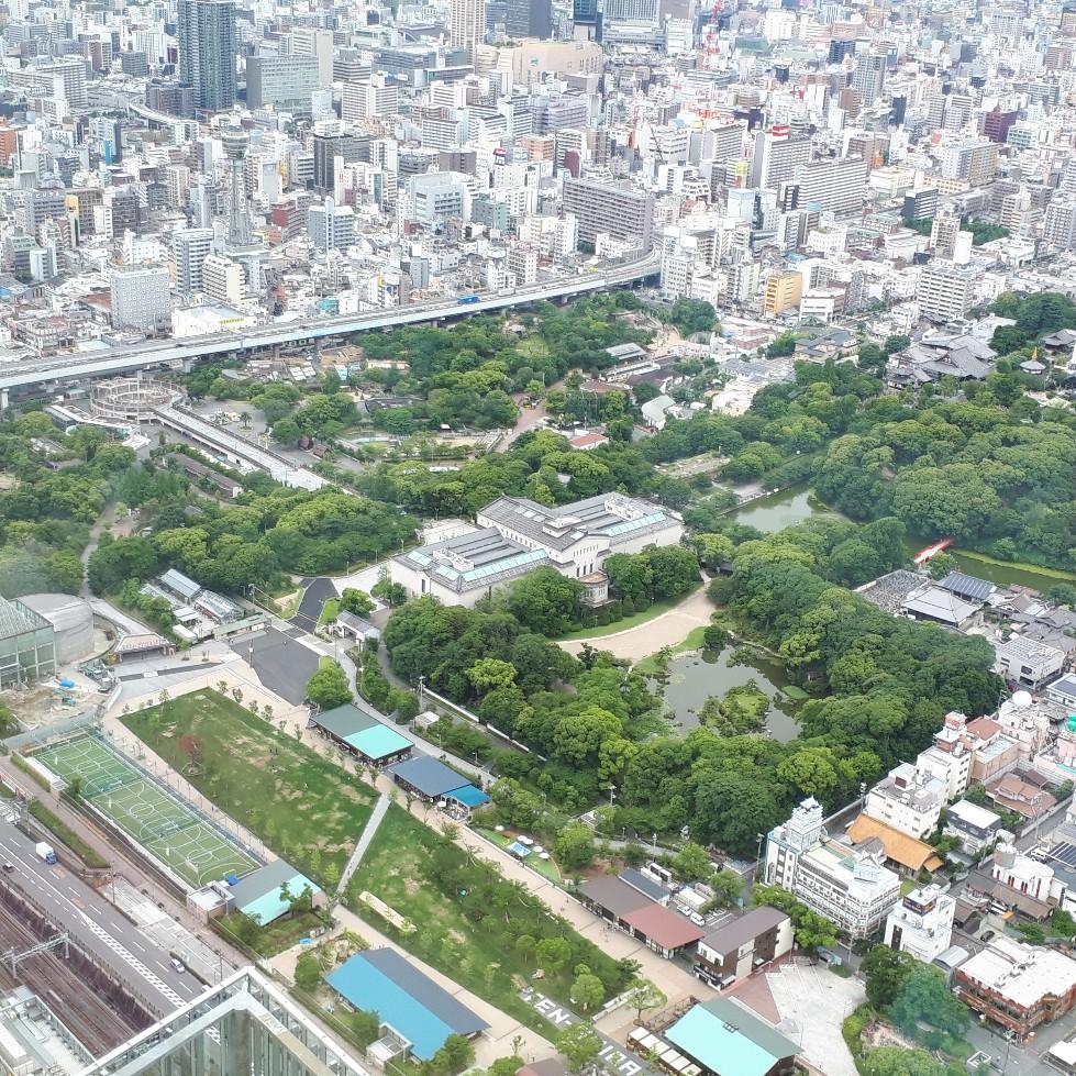 f:id:mizuhosakura555:20180615103401j:plain