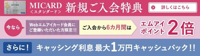 f:id:mizuhosakura555:20180715092159j:plain