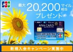 f:id:mizuhosakura555:20180801231915j:plain