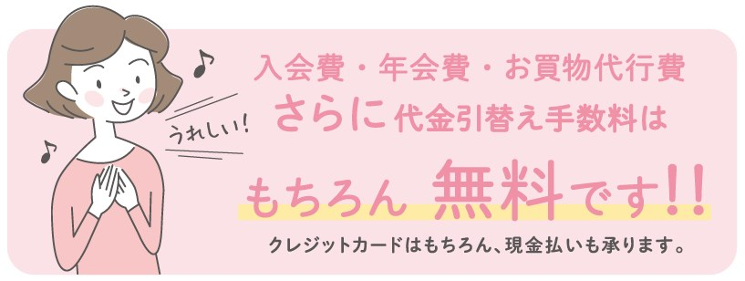 f:id:mizuhosakura555:20180812153606j:plain