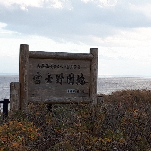 f:id:mizuhosakura555:20181107121532j:plain
