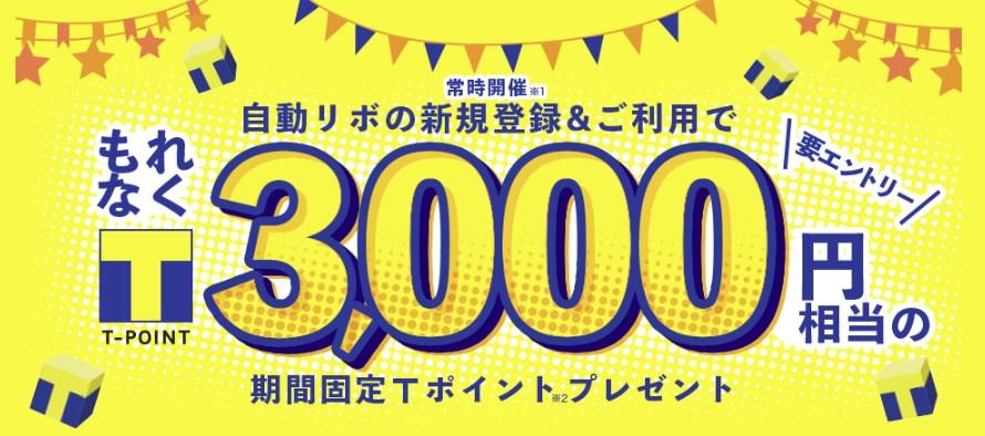 f:id:mizuhosakura555:20181113120445j:plain