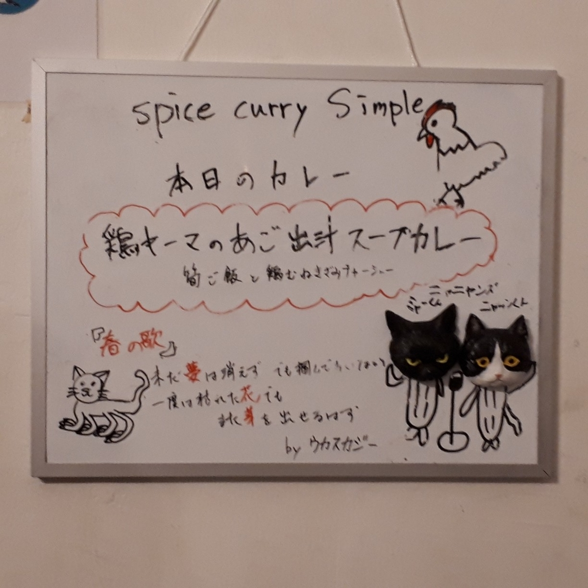 spice curry Simple  鶏キーマのあご出汁スープカレー