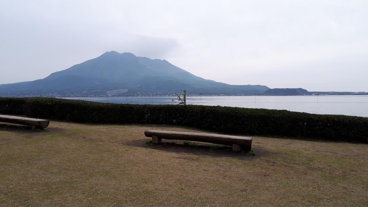 仙厳園 芝生広場からみる桜島