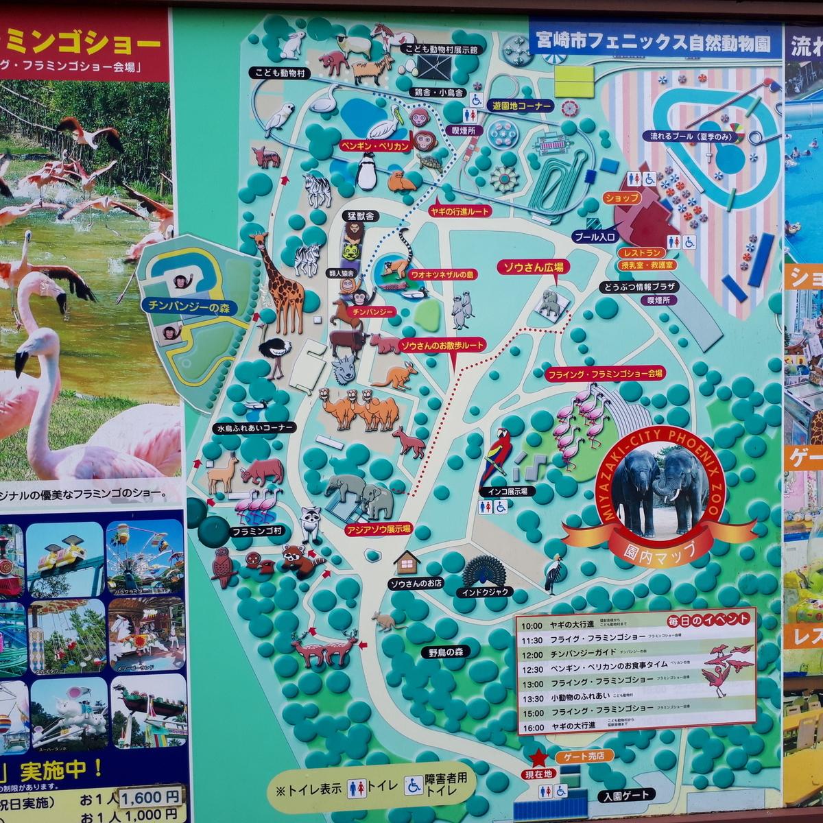 宮崎市フェニックス自然動物園 案内図
